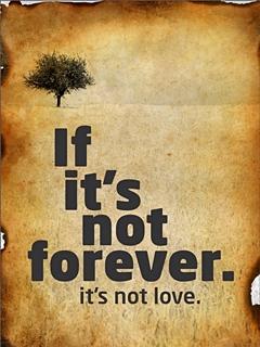 1330542083_true_love